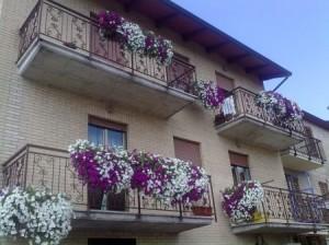 terrazzo-fiori